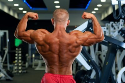 1477317884-1761-back-workout